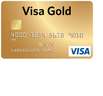 MUCFCU Visa Gold Card