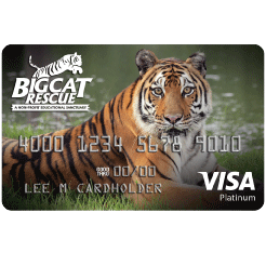 Big Cat Rescue Affinity Card