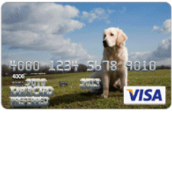 Canandaigua National Bank and Trust Secured Card