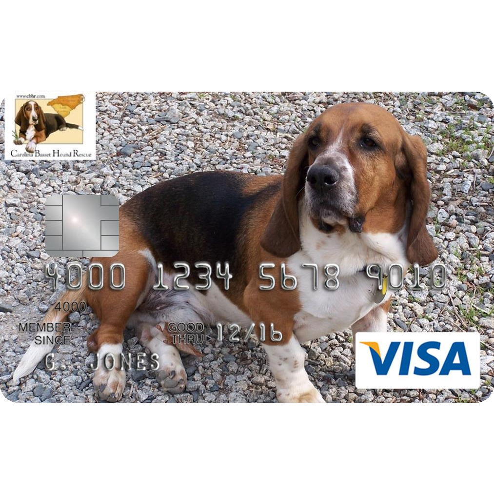 Carolina Basset Hound Rescue Credit Card