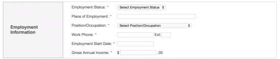 Raymour-and-Flanigan-credit-card-application-employment-information