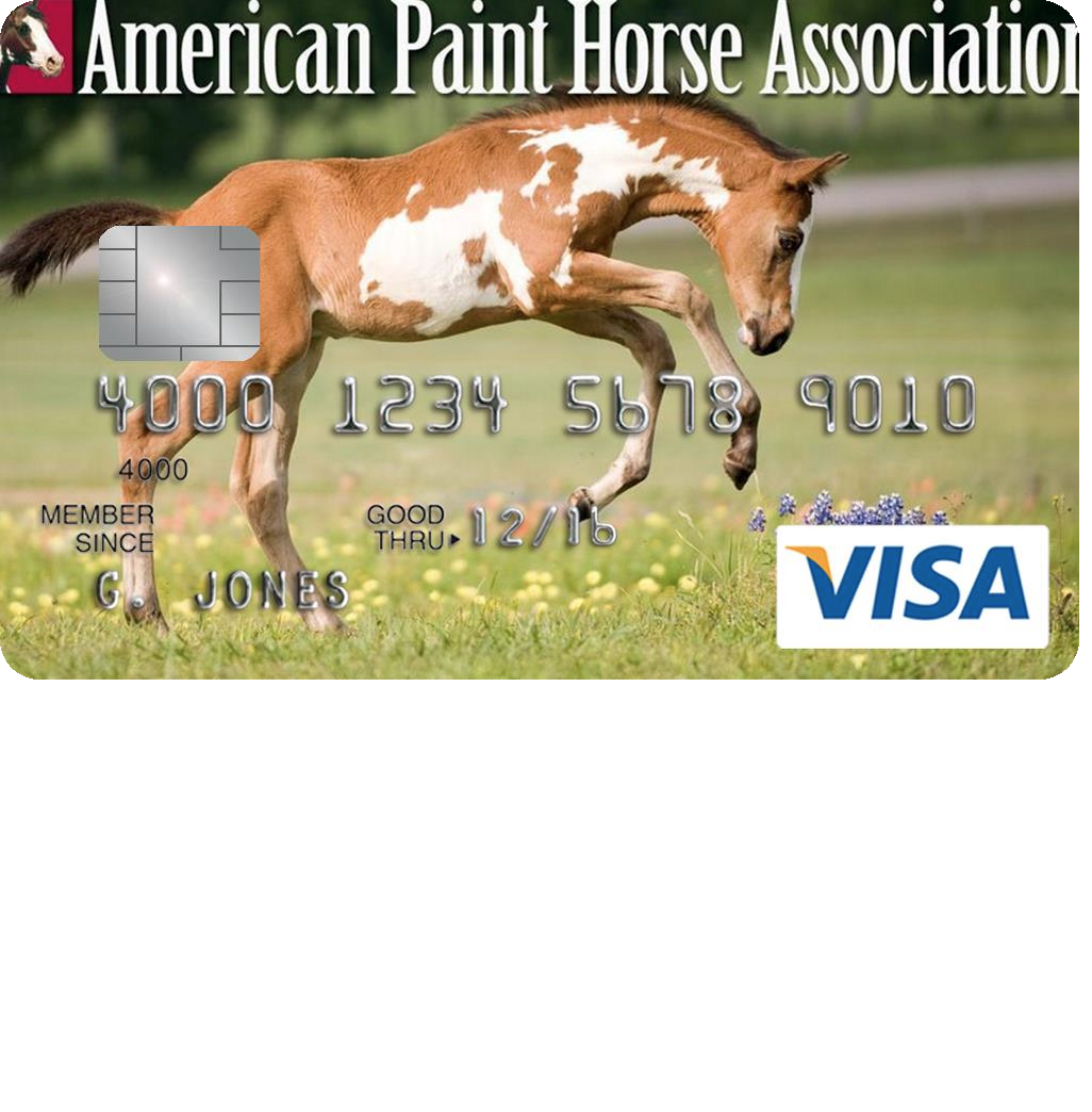 American Paint Horse Association Credit Card