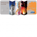 Charter Oak Visa Platinum Credit Card